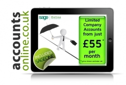 Limited company accounts from £55 pm with Internet Accountants