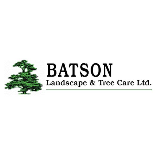 batson landscape tree care ltd in unit 1 inkerman road bishop auckland dl13 4qb chronicle live. Black Bedroom Furniture Sets. Home Design Ideas