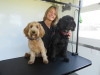 Wagtime Dog Grooming Parlour