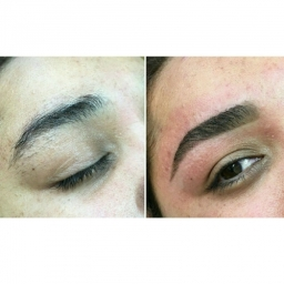 Eyebrow reshape and tint book now on zahmal.com
