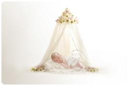 newborn photography narborough