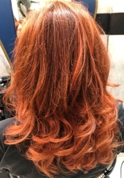 Copper Colour, Cut and Curly Blowdry