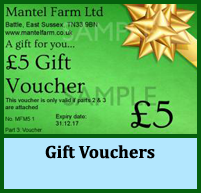 gift vouchers, promotions, loyalty card schemes