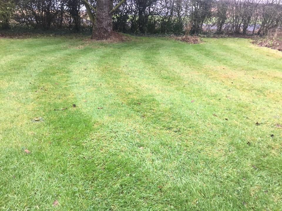 Landscape Garden Nuneaton : Details for nuneaton garden maintenance in wiclif way