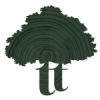 Thinktrees Ltd