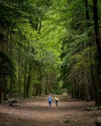 Location Photography in Suffolk ©Paul Coghlin
