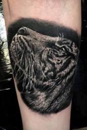tiger realistic tattoo,Stotker Tattoo shop London