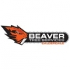 Beaver-Tree Services Calderdale Ltd