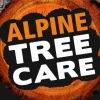 Alpine Tree Care