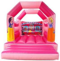 11 x 15ft Princess Bouncy Castle