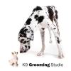K9 Grooming Studio
