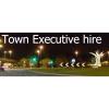 Town Executive Hire