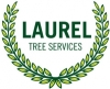 Laurel Tree Services
