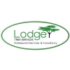 Lodge Tree Services