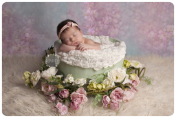 newborn photographer in Leics