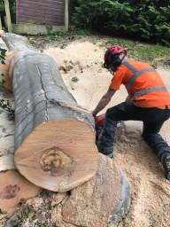 Beech Tree Prestwich