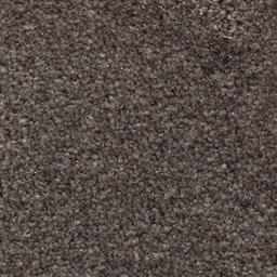 iSense Surprise 44 Carpet