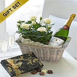 Champagne Gift Planted Basket 4 Edited 1