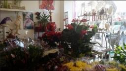 Florist Shop Nuneaton