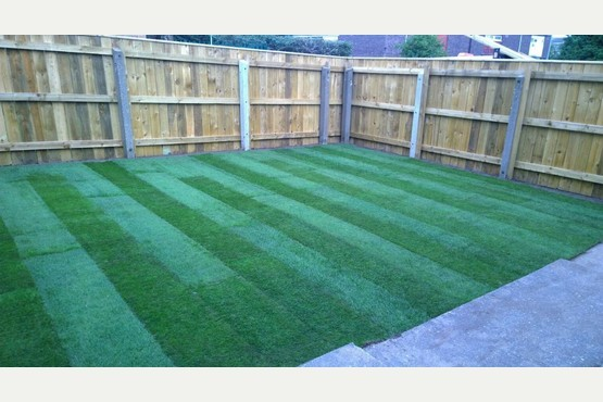 Complete garden services in 92 danube road hull north for Complete garden services