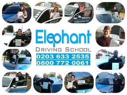 Elephant Driving School