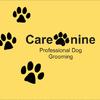 Care-nine