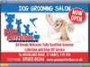 Paw Purrfection- St Annes Dog Grooming