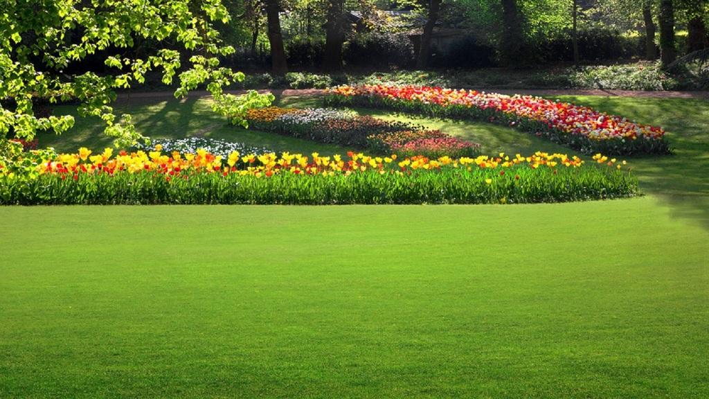 Details For Hedgerow Garden Landscape Services Ltd In Hedgerow Place Bullbeggars Lane ...