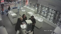 Shop Surveillance