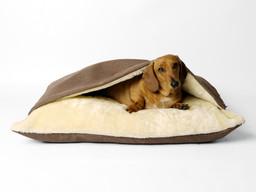 Charley Chau Snuggle Bed