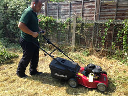 Lawn Mowing and Lawn Care