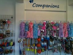 Companions Toys