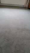 cleanmycarpets.co.uk