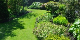 A nicely maintained garden