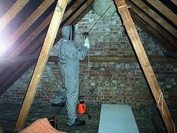 Bed Bugs Pest Problem Services Ware 1 AM-PM Pest Control 15 Whiteley Close, Dane End, Ware, Hertfordshire SG12 0NB 01920 438719  http://www.am-pmpestcontrol.co.uk geotagged geo:lat=51.875880 geo:lon=-0.063105