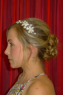 Bridal Hair Up Do and Bridal Make up
