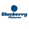 Blueberry Pictures Ltd