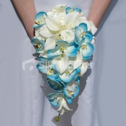 Calla Lily and Aqua Orchid Cascading Bridal Bouquet