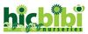 Hic Bibi Wholesale Nurseries