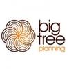 Big Tree Planning Ltd