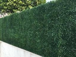 hedgedin artificial boxwood hedge privacy screen