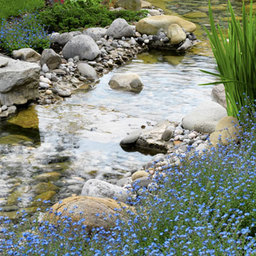 Ponds and Rock Gardens