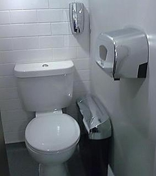 Chrome Sanitary Bin Service