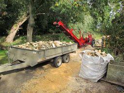 Trailer loads of logs for sale
