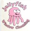 Jellyfish Window Cleaning