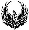 Phoenix Multi Service