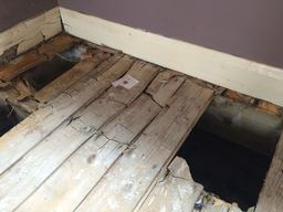 Dry Rot Yorkshire