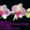 Allium Florists
