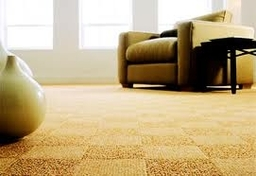 Floor Pic2