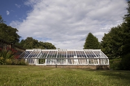 Greenhouse 01
